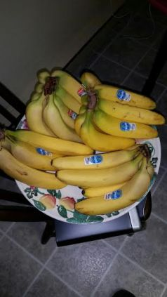 got bananas